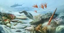 Deniz Altı - duvar posteri denizaltı 72152053