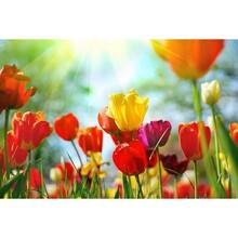 Çiçek - duvar posteri çiçek 485