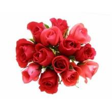 Çiçek - duvar posteri çiçek 4940752