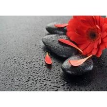 Çiçek - duvar posteri çiçek 52181065