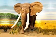 Hayvanlar - duvar posteri hayvanlar N605