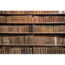 Kitaplık - duvar posteri kitaplık 103225520