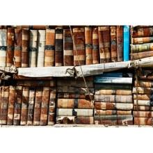 Kitaplık - duvar posteri kitaplık 11533624