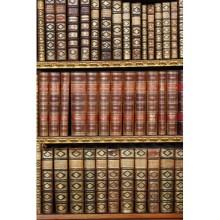 Kitaplık - duvar posteri kitaplık 50733205