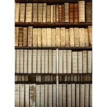 Kitaplık - duvar posteri kitaplık 83371546