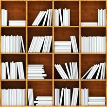 Kitaplık - duvar posteri kitaplık N049