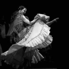 Müzik Dans - duvar posteri müzik dans 68856301
