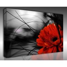 Kanvas Tablo Çiçek - Kanvas Tablo 00126