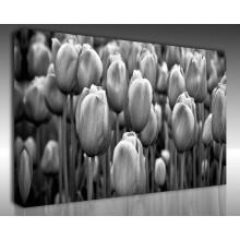 Kanvas Tablo Çiçek - Kanvas Tablo 00172