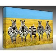 Kanvas Tablo Hayvanlar - Kanvas Tablo 00535