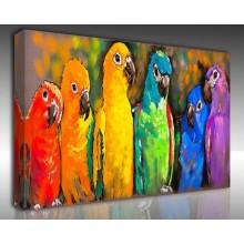 Kanvas Tablo Hayvanlar - Kanvas Tablo 00575