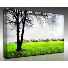 Kanvas Tablo Manzara - Kanvas Tablo 00695