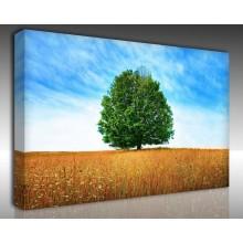Kanvas Tablo Manzara - Kanvas Tablo 00701