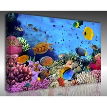 Kanvas Tablo Akvaryum - Kanvas Tablo Akvaryum 16