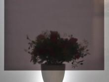 D-C-Fix Cam Vitray Yapışkanlı - Yapışkanlı Folyo D-C-Fix 200-2980 Transparent Uni Schwarz